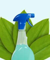 Detergente e detersivi ecologici biodegradabili Milano Bergamo Brescia